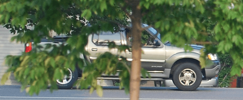 Vehicle partially hidden behind tree
