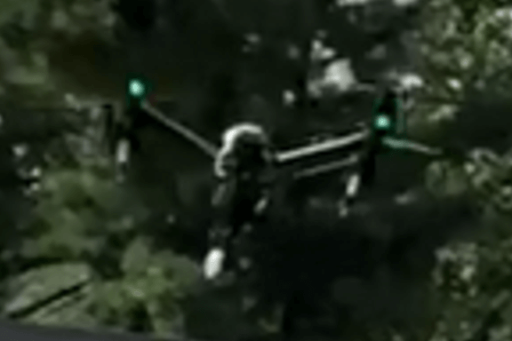 Drone with heavy foliage in background